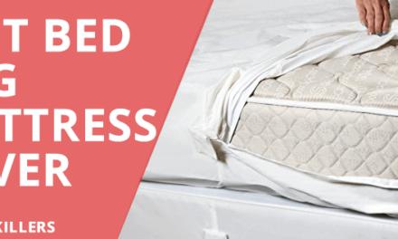 Best Bed Bug Encasement Reviews 2018 – Buyers Guide