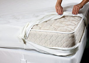 Image of The Original Sleep Defense System Waterproof Mattress
