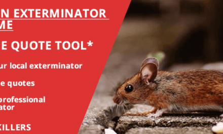 Find Your Local Exterminator Tool